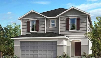 Hillsborough County Single Family Home For Sale: 7720 Sunshine Bridge