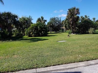 New Port Richey Single Family Home For Sale: 0 Ingersol Place