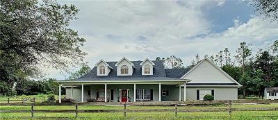 Thonotosassa Single Family Home For Sale: 12713 Saint Francis Lane