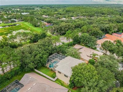 Hernando County, Hillsborough County, Pasco County, Pinellas County Single Family Home For Sale: 18117 Regents Square Drive