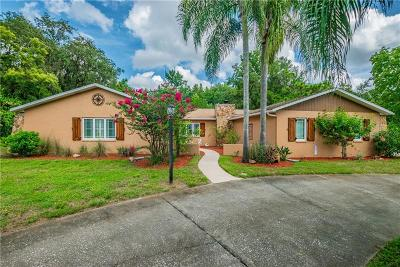 New Port Richey Single Family Home For Sale: 6635 Coronet Drive