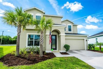 Apollo Beach Single Family Home For Sale: 5076 Inshore Landing Drive