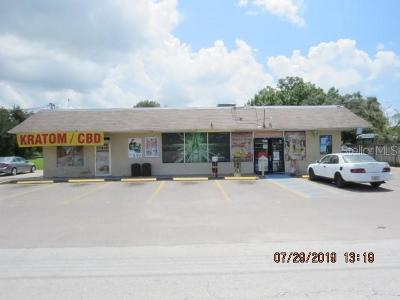 Tampa Commercial For Sale: 4821 George Road