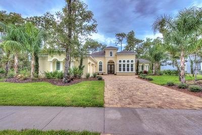 Port Orange Single Family Home For Sale: 2406 Wild Turkey Creek Lane
