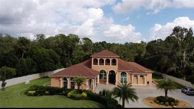Lutz FL Single Family Home For Sale: $1,750,000