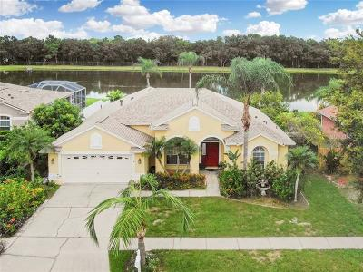 Riverview Single Family Home For Sale: 10108 Tantara Court