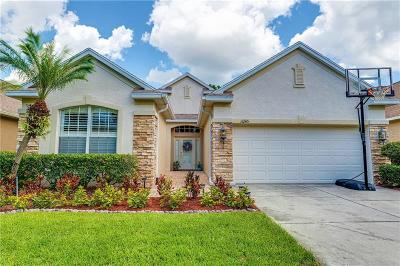 Tampa Single Family Home For Sale: 11245 Blacksmith Drive