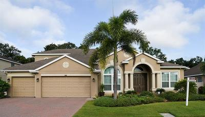 Clearwater, Clearwater Beach Single Family Home For Sale: 920 Earlham Drive