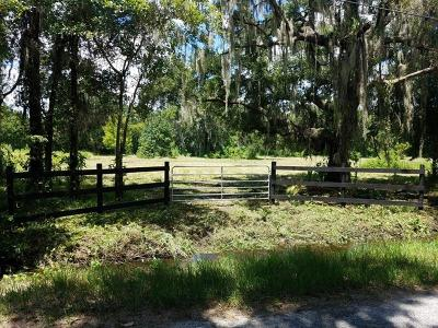 Plant City Residential Lots & Land For Sale: 2401 Procchi Street