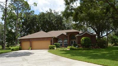 Tampa Single Family Home For Sale: 15802 Stanton Lane