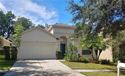 Valrico Single Family Home For Sale: 1137 Emerald Hill Way