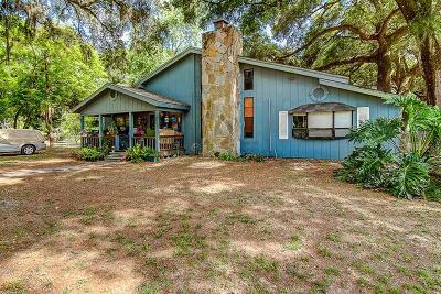 Thonotosassa Single Family Home For Sale: 10503 Main Street