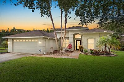 Tarpon Springs Single Family Home For Sale: 544 Bridle Path Way