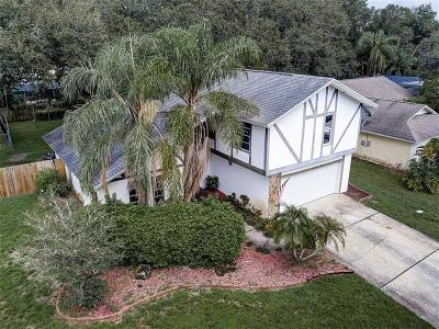 Safety Harbor Single Family Home For Sale: 4163 Mallard Drive