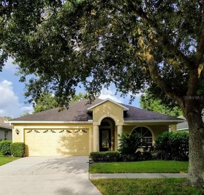 Valrico Single Family Home For Sale: 1109 Lumsden Pointe Boulevard