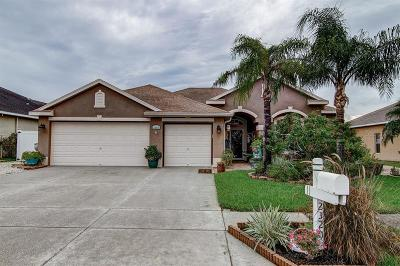 Pasco County Single Family Home For Sale: 2320 Wood Pointe Drive