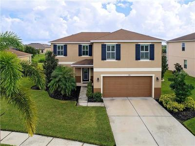 Apollo Beach Single Family Home For Sale: 228 Star Shell Drive