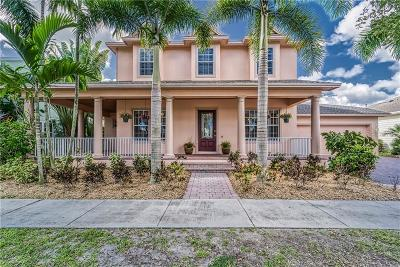 Apollo Beach Single Family Home For Sale: 849 Islebay Drive