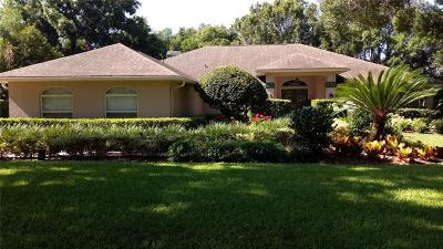 Hillsborough County Single Family Home For Sale: 1435 Hounds Hollow Court