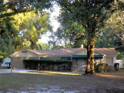 Tampa Single Family Home For Sale: 1206 E Hanna Avenue