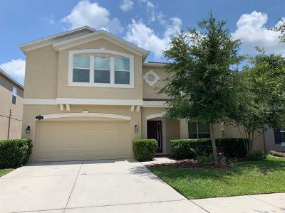 Tampa Single Family Home For Sale: 10716 Pictorial Park Drive