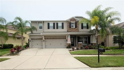 Wesley Chapel Single Family Home For Sale: 4018 Windcrest Drive