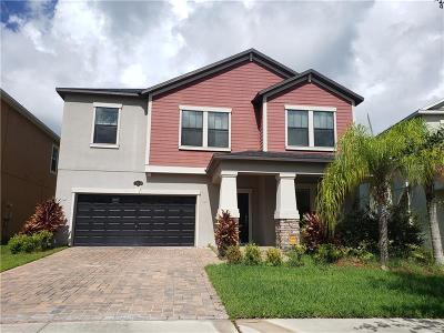 Tampa Single Family Home For Sale: 19348 Paddock View Drive