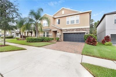 Tampa Single Family Home For Sale: 19346 Paddock View Drive