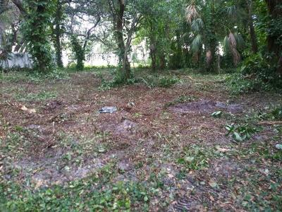 Hernando County, Hillsborough County, Pasco County, Pinellas County Residential Lots & Land For Sale: 2710 W Thornton Avenue