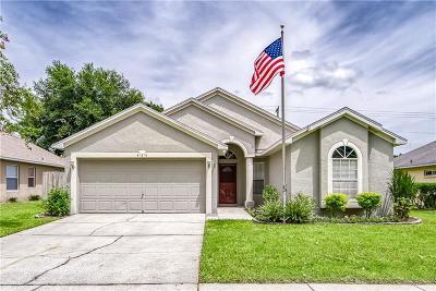 Seffner Single Family Home For Sale: 424 Henderson Avenue