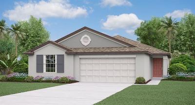 Zephyrhills FL Single Family Home For Sale: $232,290
