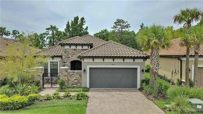 Tampa Single Family Home For Sale: 8543 Grand Alberato Road