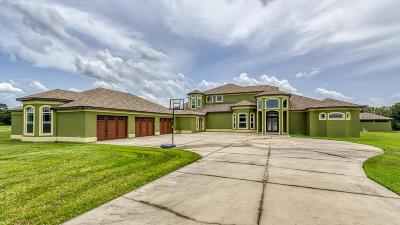 Riverview Single Family Home For Sale: 13729 Canterfield Drive