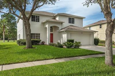 Riverview Single Family Home For Sale: 11002 Sailbrooke Drive