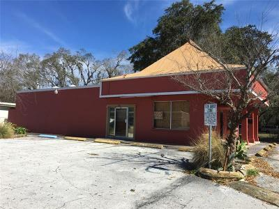 Plant City Commercial For Sale: 1106 S Collins Street