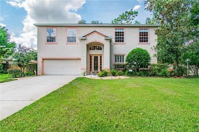 Lutz FL Single Family Home For Sale: $390,000