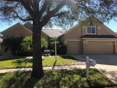 Valrico Single Family Home For Sale: 4319 Buckhorn Groves Court