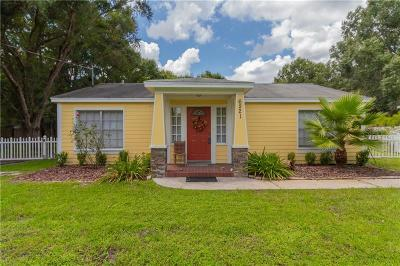 Wesley Chapel Single Family Home For Sale: 6221 Woodsman Drive