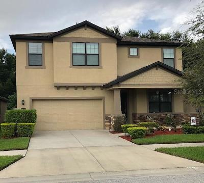 Brandon Single Family Home For Sale: 836 Vino Verde Circle