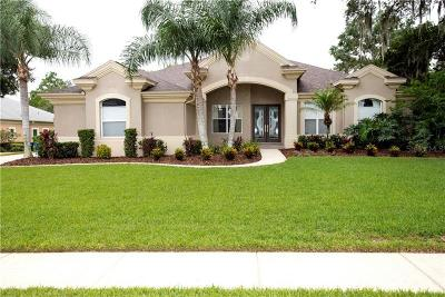 Lithia FL Single Family Home For Sale: $689,900