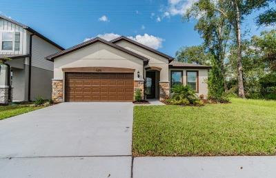Wesley Chapel Single Family Home For Sale: 6212 Dutton Drive