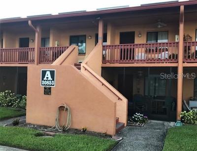Lutz Condo For Sale: 20853 Haulover Cove #A6