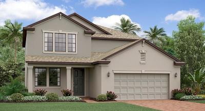 Sun City Center Single Family Home For Sale: 7317 Wash Island Drive