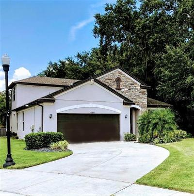 Wesley Chapel Single Family Home For Sale: 30721 Walker Cup Place