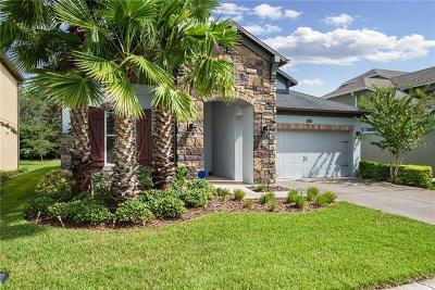 Wesley Chapel Single Family Home For Sale: 4446 Vermillion Sky Drive
