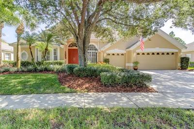 Tampa Single Family Home For Sale: 10404 Greenhedges Drive
