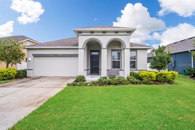 Wesley Chapel Single Family Home For Sale: 32606 Rapids #2126 Loop