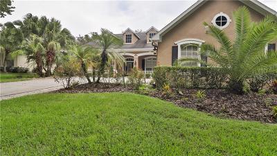 Lithia Single Family Home For Sale: 6134 Kestrelridge Drive