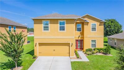 Dade City Single Family Home For Sale: 13228 Waterford Castle Drive