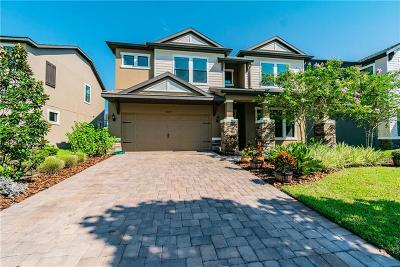 Pasco County Single Family Home For Sale: 12299 Lake Blanche Drive